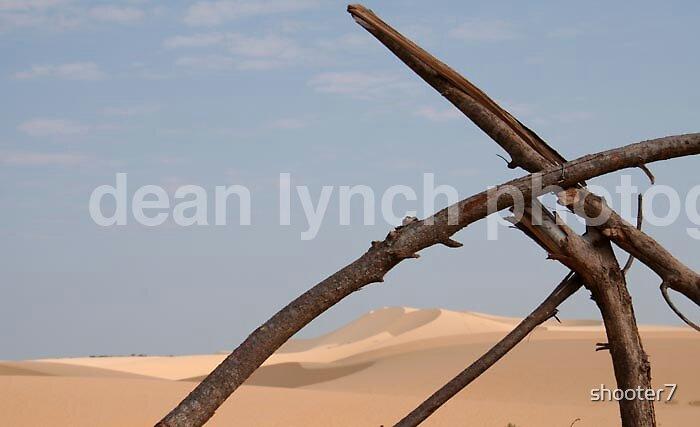 desert by shooter7