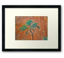 Uluru Detail #3 Framed Print