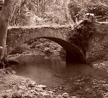 Bridge by adyb