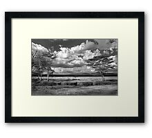The plains where the zebra and buffalo roam Framed Print