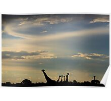 Giraffe Silhouette - Epic Sky and Freedom Poster