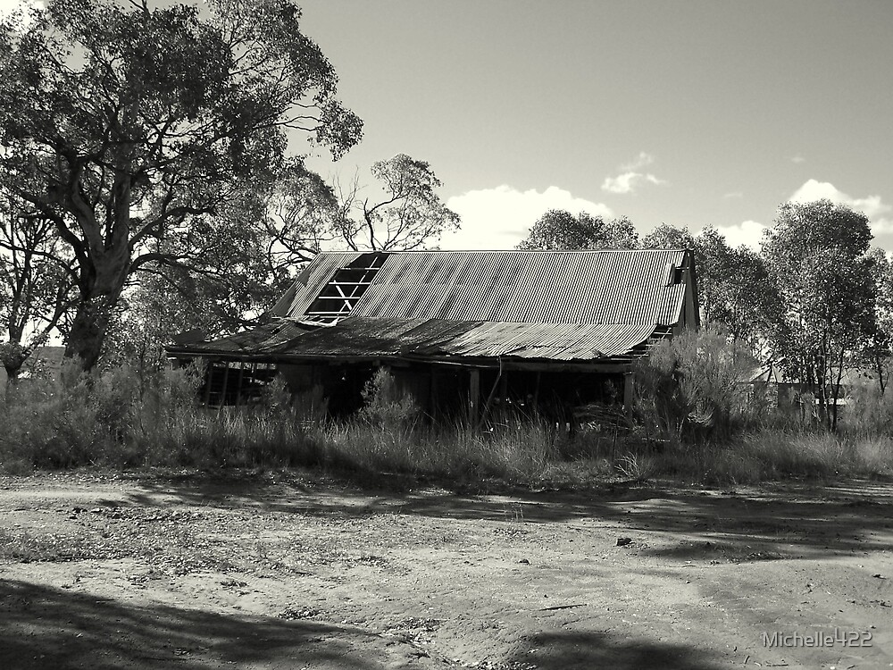 Retired Shed by Michelle422