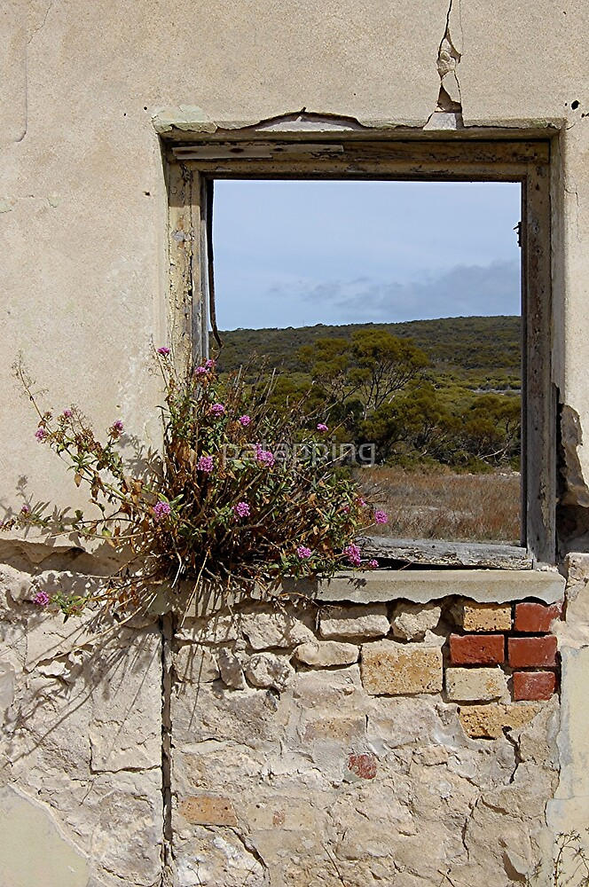 View Beyond, Inneston Sth Aust. by patapping
