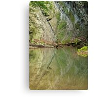 Reflected cliff Canvas Print