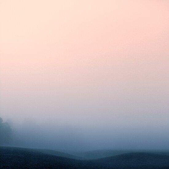 Hidden in the Mist by James McKenzie