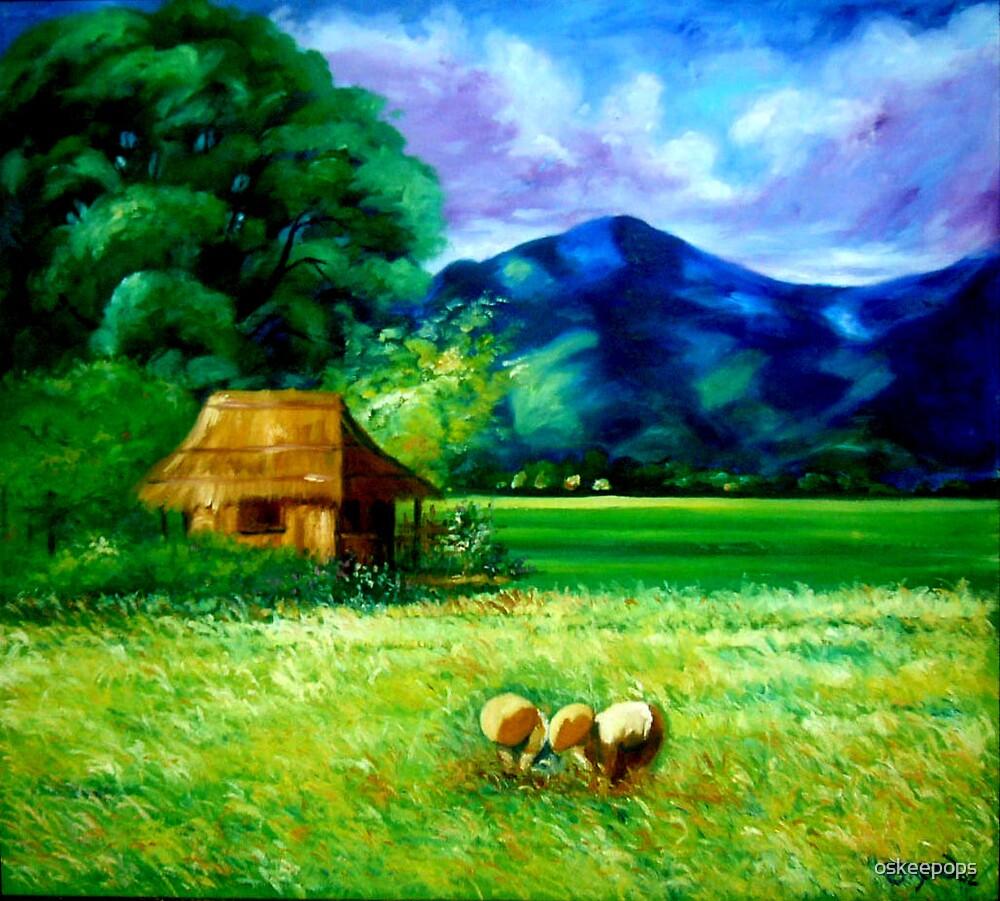 rice field(palayan) by oskeepops