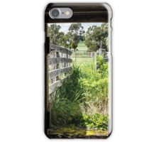 Down the Chute iPhone Case/Skin
