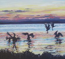 Pelicans on Tuggerah Lake at Sunset by Beryl Withnell