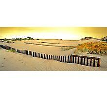Dune Stabilisers, Cape Arid National Park Photographic Print