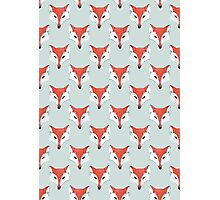 Fox Pattern on Sage  Photographic Print