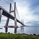 Vasco de Gama Bridge, Lisbon, Portugal by Alessio Michelini