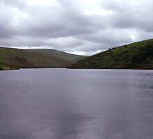 Dartmoor Dam by vee1616