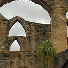 Arches At San Jose by Holly Werner