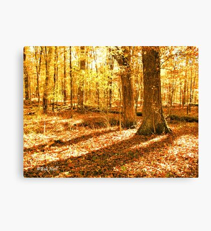 """""""Color Me Fall, 2""""... prints and products Canvas Print"""
