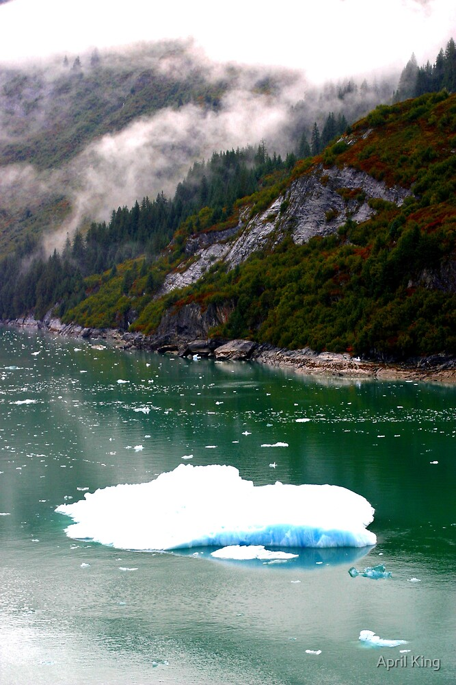 Iceberg In Alaska by April King