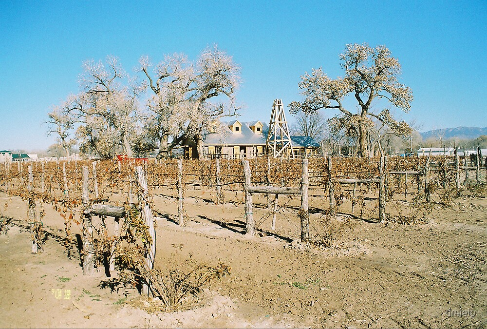 Farmland USA by dmielp