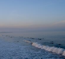 A School of Surfers by wildesummerrose