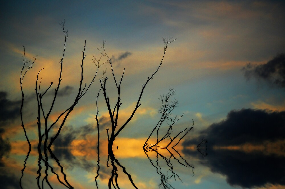 Reflections by Sarah Moore