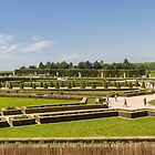Palace Gardens, Versailles, France by Elaine Teague