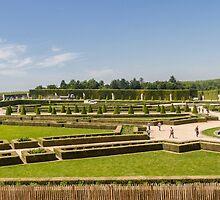 Palace Gardens, Versailles, France by Elaine Teague