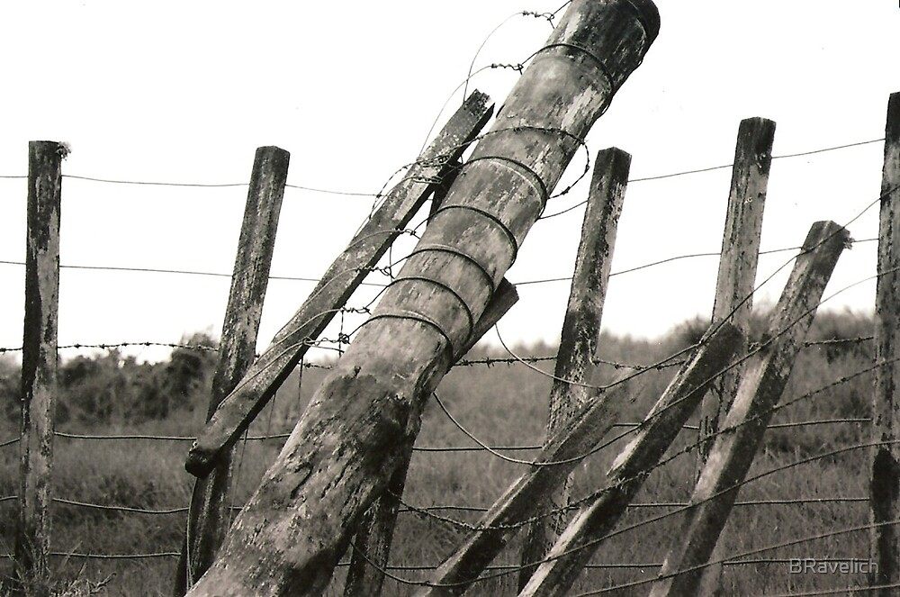 Fallen Fence by BRavelich