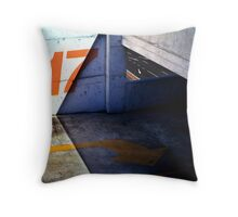 17 Below Throw Pillow