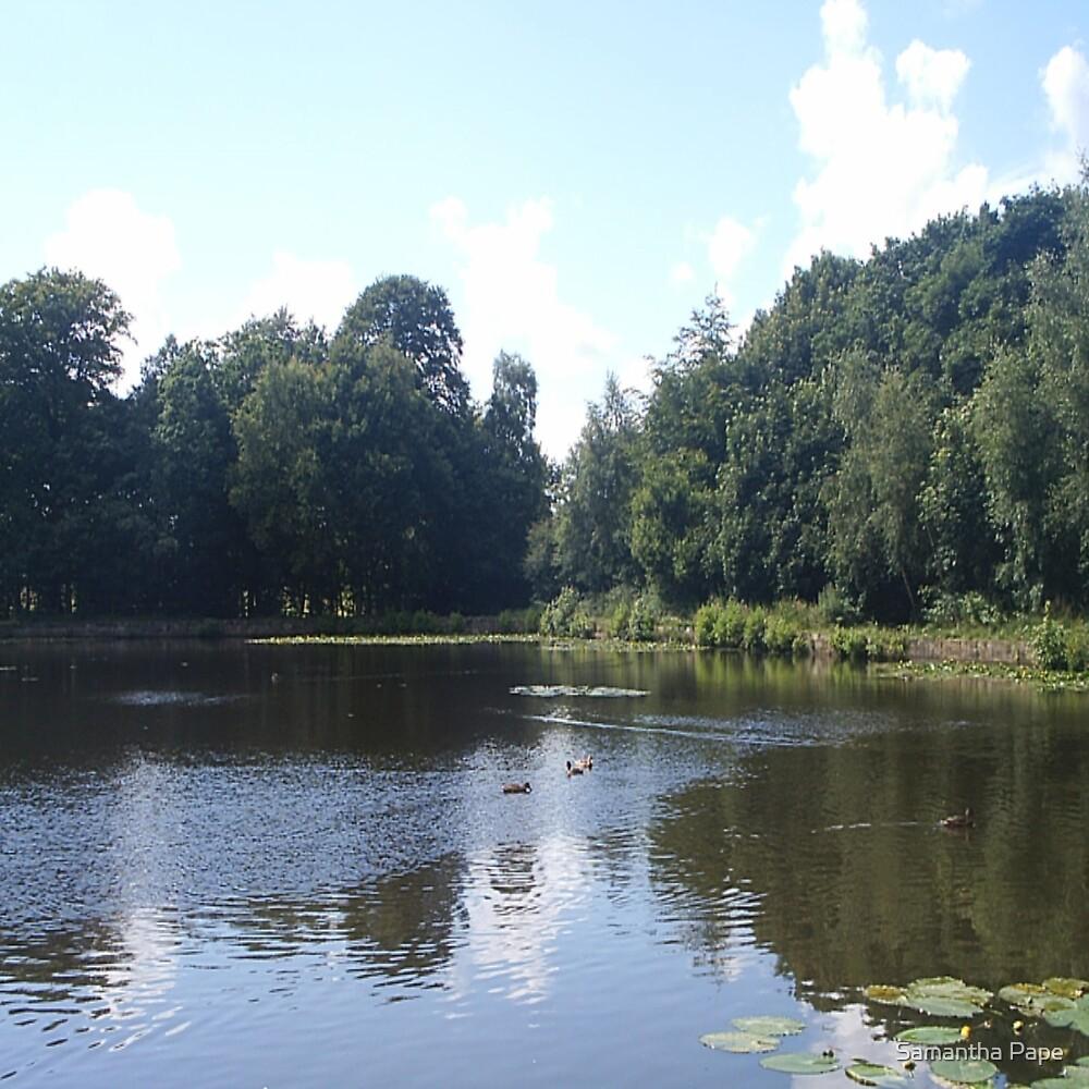 Serene Lake by Samantha Pape