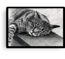 Sunday Snooze Canvas Print