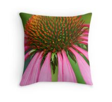 Echinacea in pink Throw Pillow