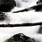 13.11.2014: Small River III by Petri Volanen