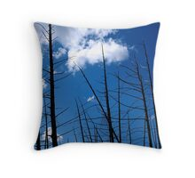 Dirty Gitwits Throw Pillow