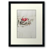 Merry Christmas!  Framed Print