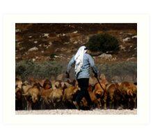 arab shepherd Art Print