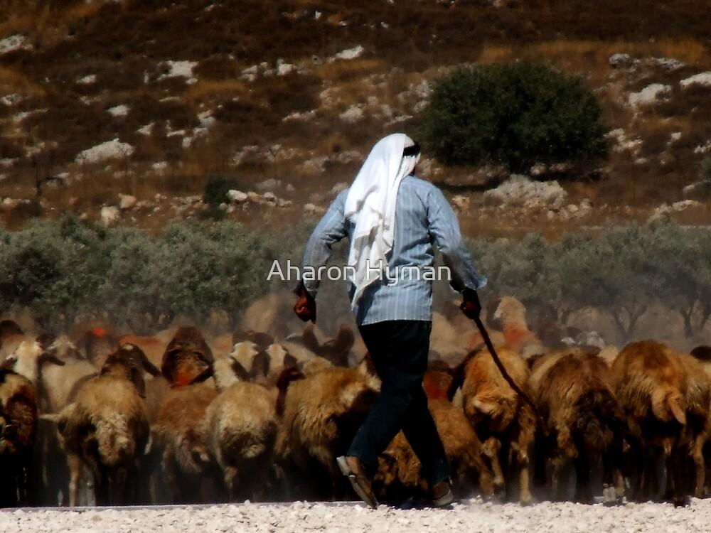 arab shepherd by Aharon Hyman