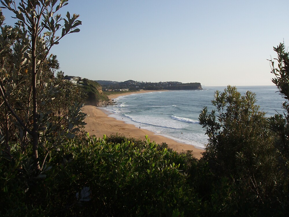Warriewood Beach by andoindy