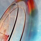 The Ferris Wheel by Steven  Lippis