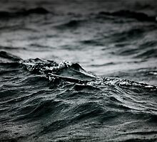 Wavelets by 2cimage