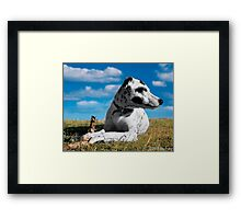 What about MY stick? Framed Print