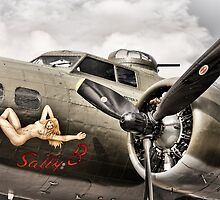 Sally B by Ian Merton