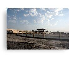 Iraqi Stadium Metal Print