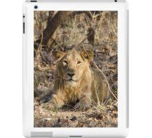 Gir Lion iPad Case/Skin