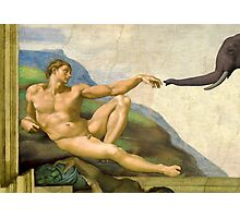 The Original Creation Of Adam With Elephant Photographic Print