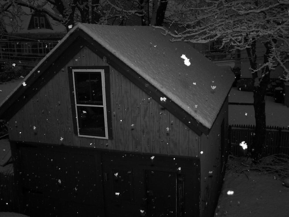 Snow by missliz
