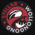 Stellar Wollongong Game On 2017 by snosalik