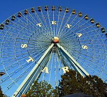 Texas Star Ferriswheel at Fair Park in Dallas by Brandon Marshall