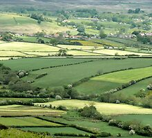 North York Moors..one view by Robert Gipson