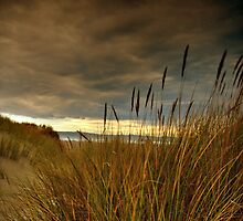 Brooding Vista by Lee Malzard