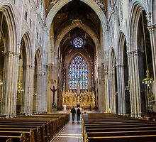 St Patrick's - Ireland by Mary Carol Story