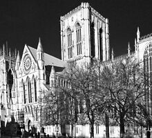 York MInster in the I.R by Robert Gipson