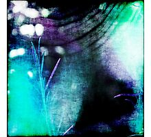 Beauty Fades // An Abstract Between Purple & Aqua Photographic Print